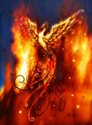 phoenix_v2_by_thejasminedragon-384x519-custom