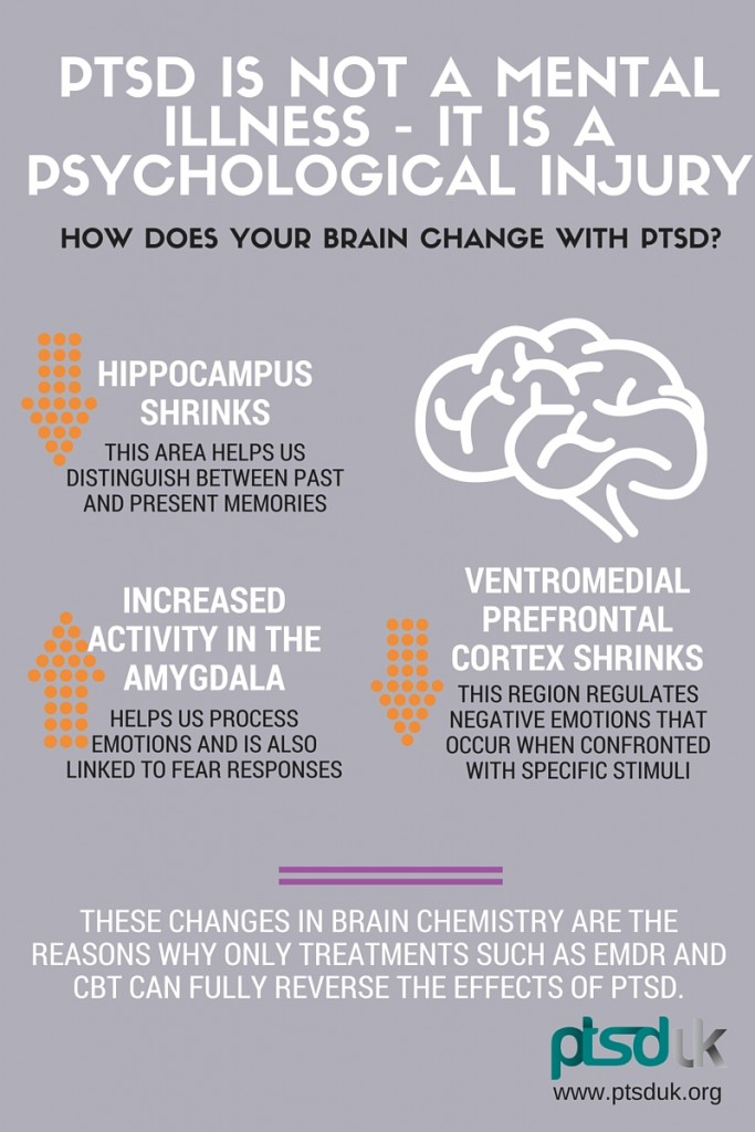 how-does-your-brain-change-with-ptsd-683x1024